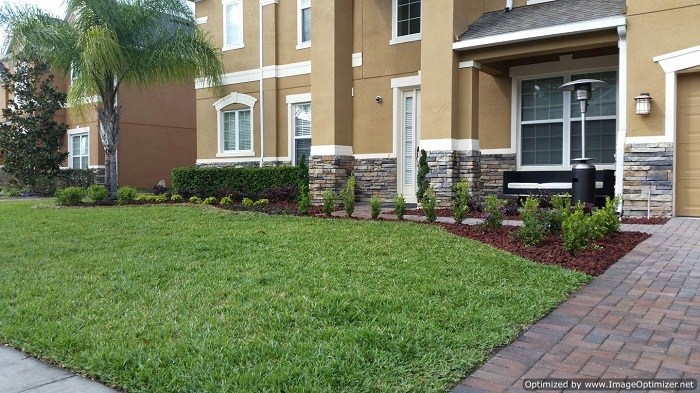 Landscape Service in Winter Park