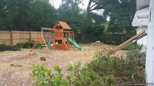 sod removal in belle isle