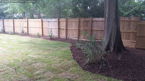 sod service in college park