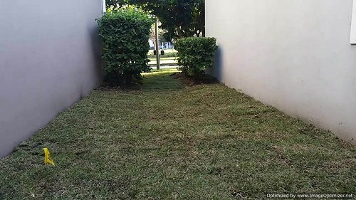 sod service in conway