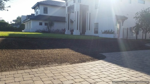 maitland sod removal