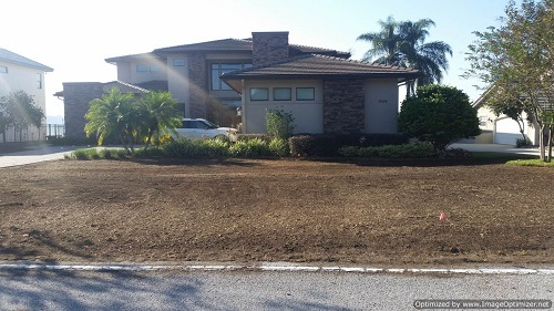sod removal in winter garden